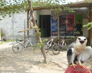 Tampak Depan Camp Putra